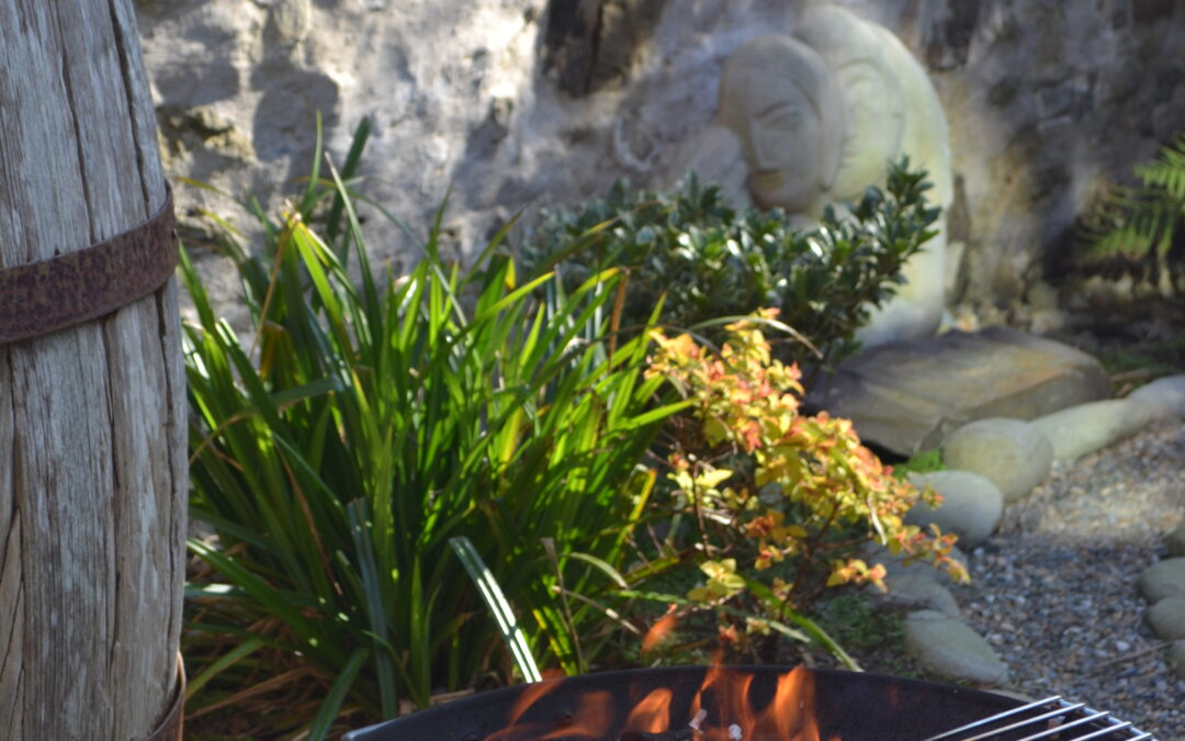 Firepits and Dragons (1)